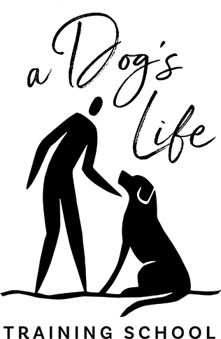 A Dog's Life Training School